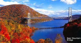Bridge to Customer Needs